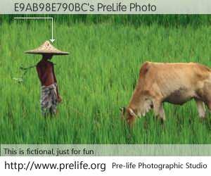 E9AB98E790BC's PreLife Photo