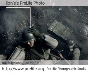 lion's's PreLife Photo