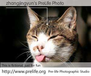 zhangjingyun's PreLife Photo