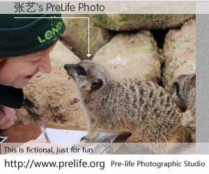 张艺's PreLife Photo