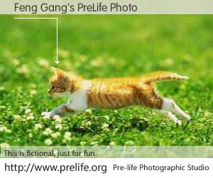 Feng Gang's PreLife Photo