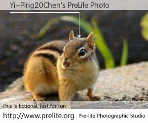 Yi-Ping20Chen's PreLife Photo