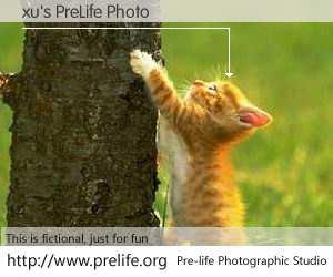 xu's PreLife Photo