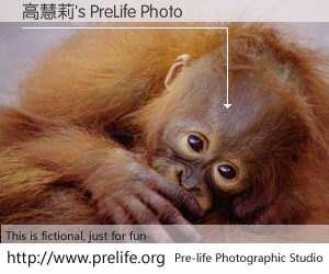 高慧莉's PreLife Photo