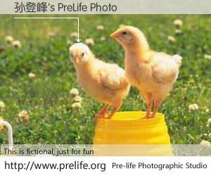 孙登峰's PreLife Photo