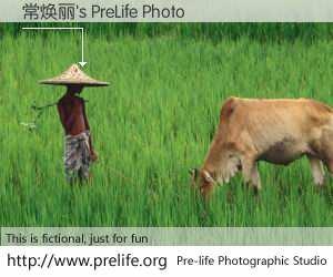 常焕丽's PreLife Photo