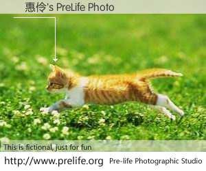 賴惠伶's PreLife Photo