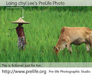 Laing chyi Lee's PreLife Photo