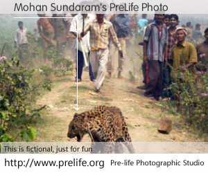Mohan Sundaram's PreLife Photo