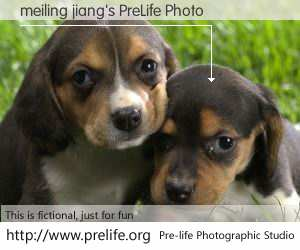 meiling jiang's PreLife Photo