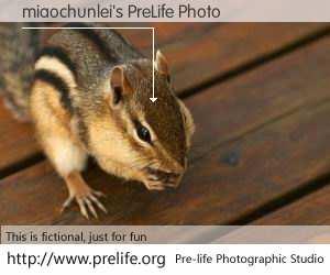 miaochunlei's PreLife Photo