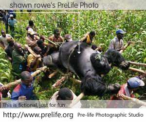 shawn rowe's PreLife Photo