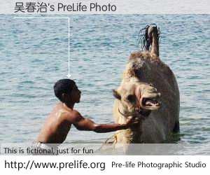 吴春治's PreLife Photo