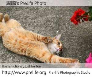 周鹏's PreLife Photo