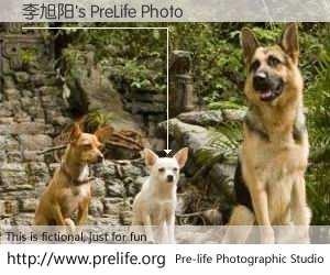 李旭阳's PreLife Photo