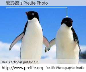 郭珍霞's PreLife Photo