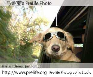 马金宝's PreLife Photo