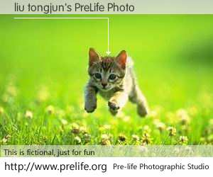 liu tongjun's PreLife Photo