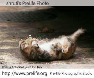 shruti's PreLife Photo