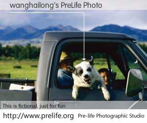 wanghailong's PreLife Photo