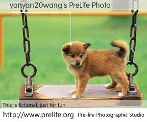 yanyan20wang's PreLife Photo