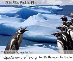 李民斌's PreLife Photo