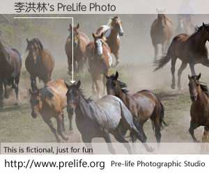 李洪林's PreLife Photo