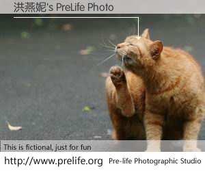 洪燕妮's PreLife Photo