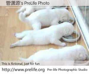 管潇源's PreLife Photo