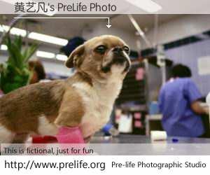 黄艺凡's PreLife Photo
