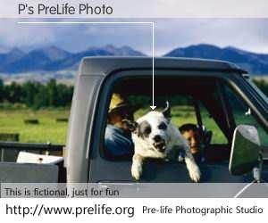 P's PreLife Photo