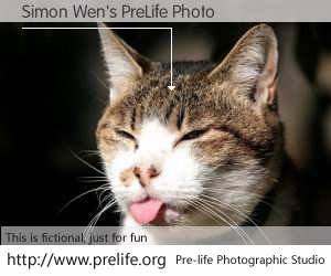 Simon Wen's PreLife Photo