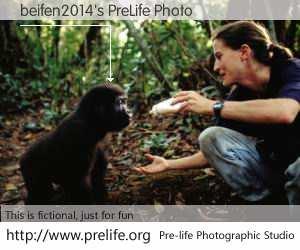 beifen2014's PreLife Photo