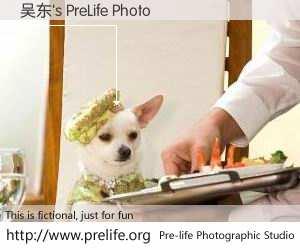 吴东's PreLife Photo