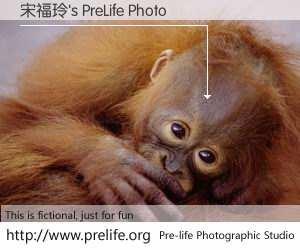 宋福玲's PreLife Photo