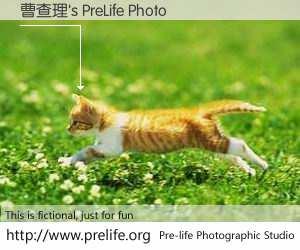 曹查理's PreLife Photo