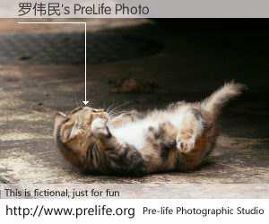 罗伟民's PreLife Photo