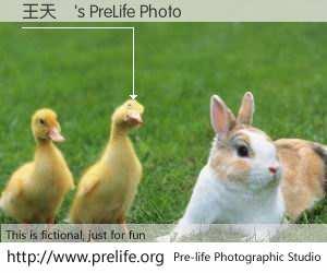 王天駿's PreLife Photo