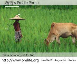 蒋锟's PreLife Photo