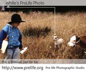 white's PreLife Photo
