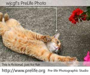 wjcgf's PreLife Photo