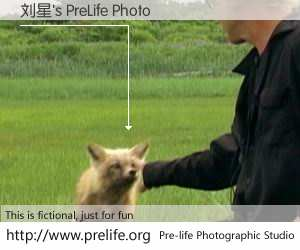 刘星's PreLife Photo
