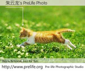朱云龙's PreLife Photo