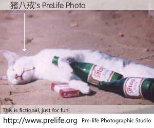 猪八戒's PreLife Photo