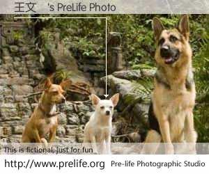 王文駿's PreLife Photo