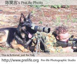 陈昊言's PreLife Photo