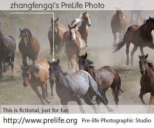 zhangfengqi's PreLife Photo