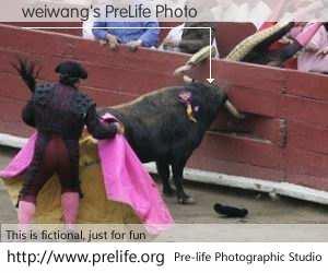 weiwang's PreLife Photo