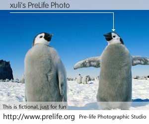 xuli's PreLife Photo