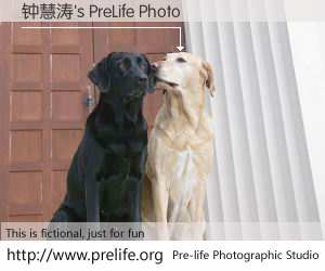钟慧涛's PreLife Photo